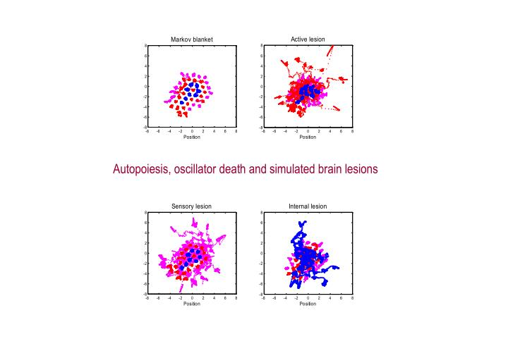 Autopoiesis, oscillator death and simulated brain lesions