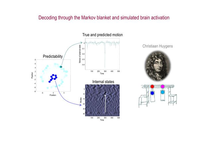 Decoding through the Markov blanket and simulated brain activation