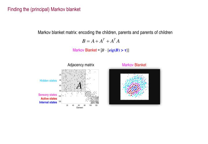Finding the (principal) Markov blanket