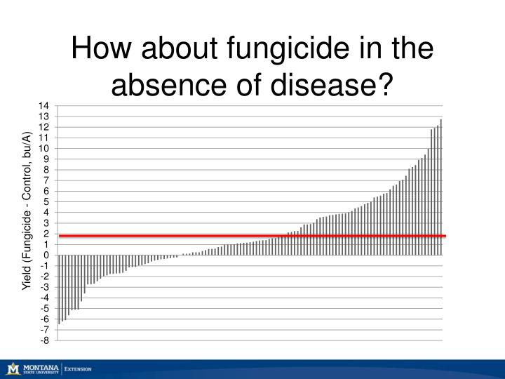How about fungicide in the absence of disease?