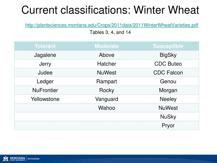 Current classifications: Winter Wheat