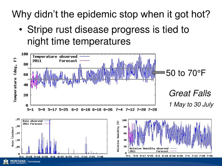 Why didn't the epidemic stop when it got hot?