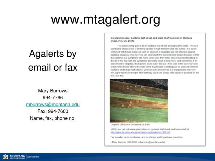 www.mtagalert.org