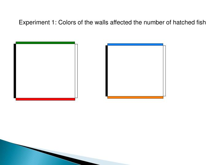Experiment 1: Colors of the walls affected the number of hatched fish