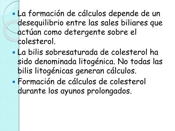 La formación de cálculos depende de un desequilibrio entre las sales biliares que actúan como detergente sobre el colesterol.