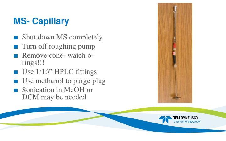 MS- Capillary