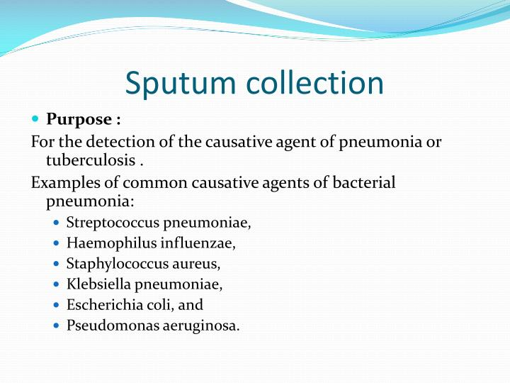 Sputum collection