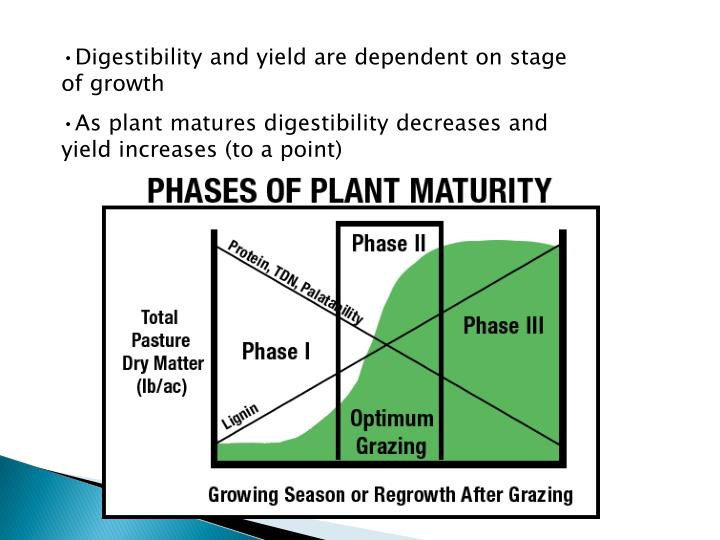 Digestibility and yield are dependent on stage of growth