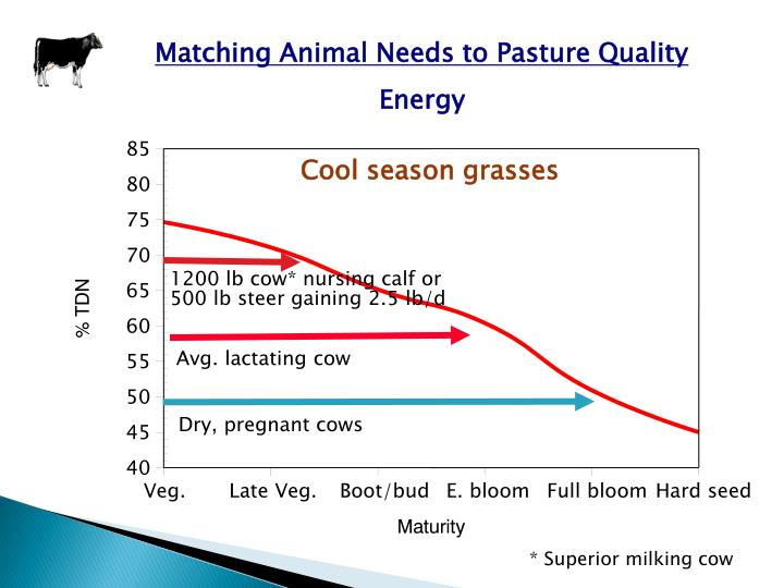 Matching Animal Needs to Pasture Quality