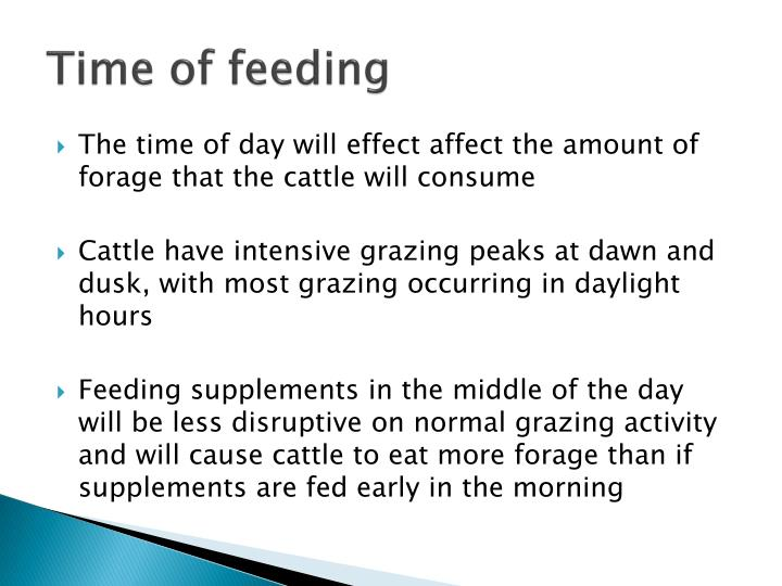 Time of feeding