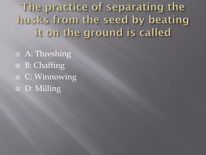 The practice of separating the husks from the seed by beating it on the ground is called