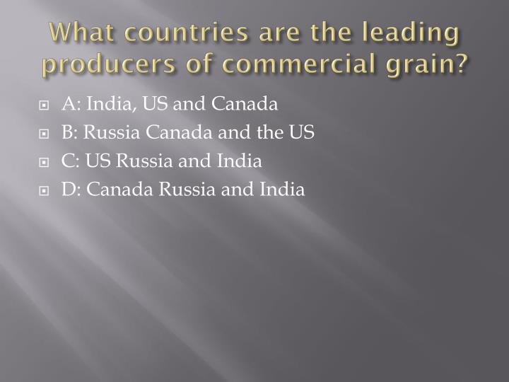 What countries are the leading producers of commercial grain?