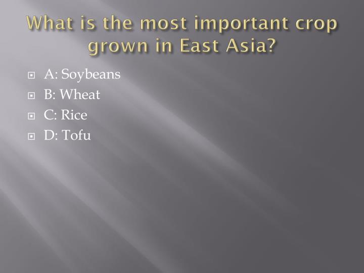 What is the most important crop grown in East Asia?