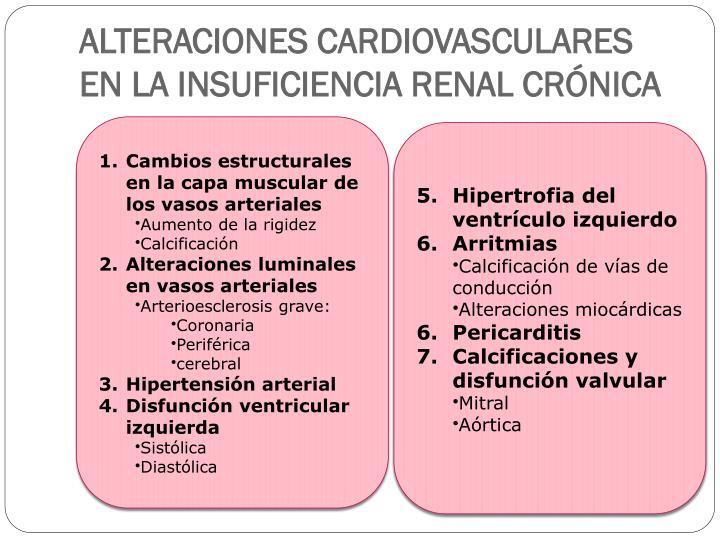 ALTERACIONES CARDIOVASCULARES EN LA INSUFICIENCIA RENAL CRÓNICA