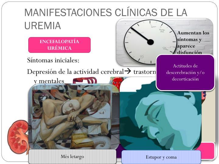 MANIFESTACIONES CLÍNICAS DE LA UREMIA