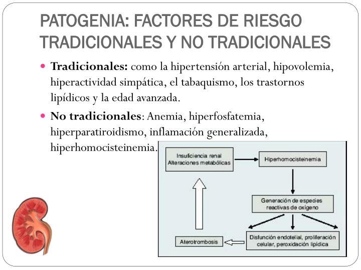 PATOGENIA: FACTORES DE RIESGO TRADICIONALES Y NO TRADICIONALES