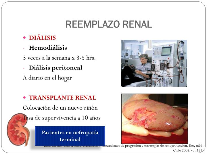 REEMPLAZO RENAL