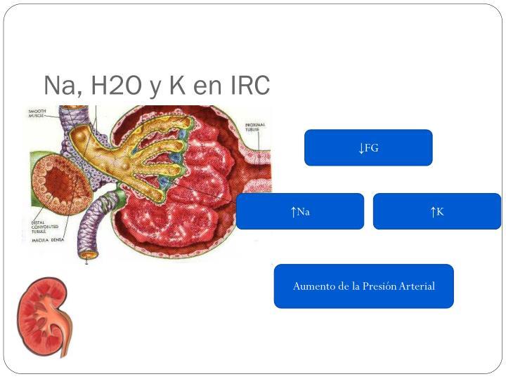 Na, H2O y K en IRC