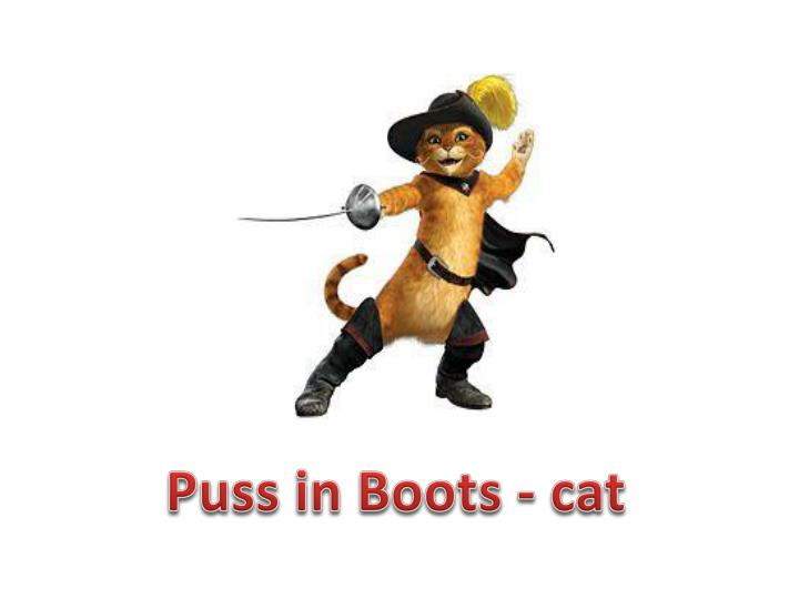 Puss in Boots - cat