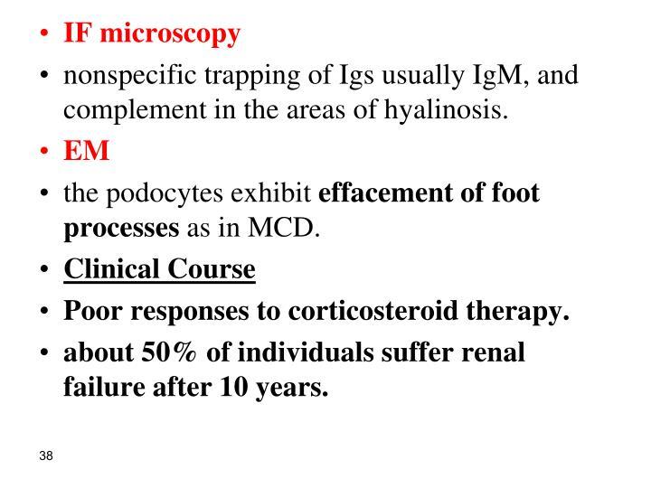 IF microscopy