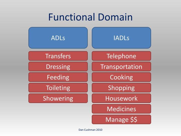 Functional Domain