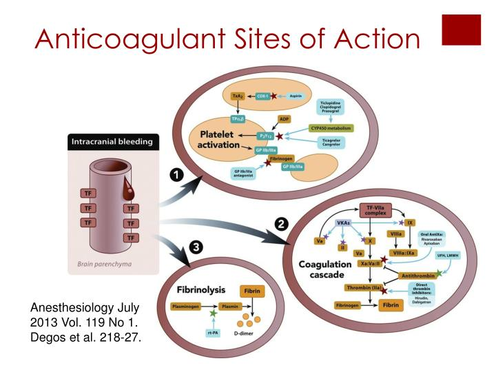 Anticoagulant Sites of Action