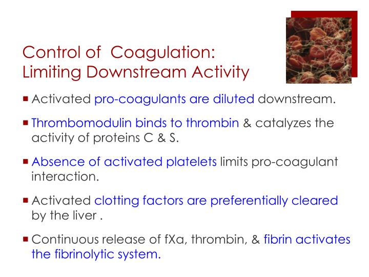 Control of  Coagulation: Limiting Downstream Activity