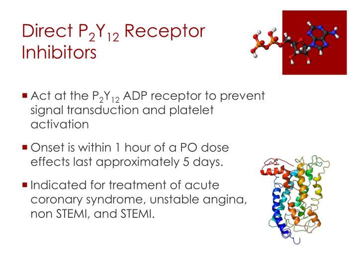 Direct P