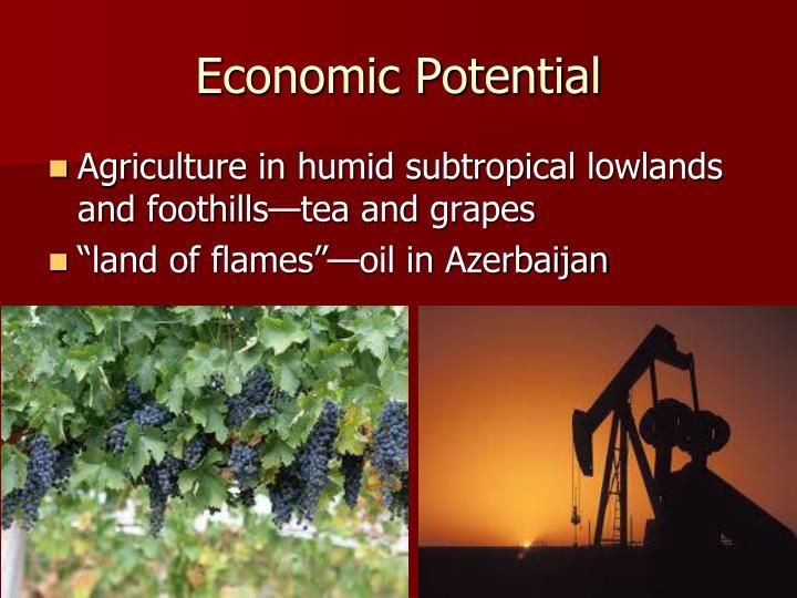 Economic Potential