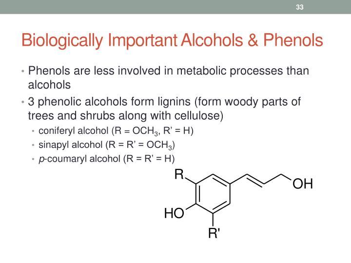 Biologically Important Alcohols & Phenols