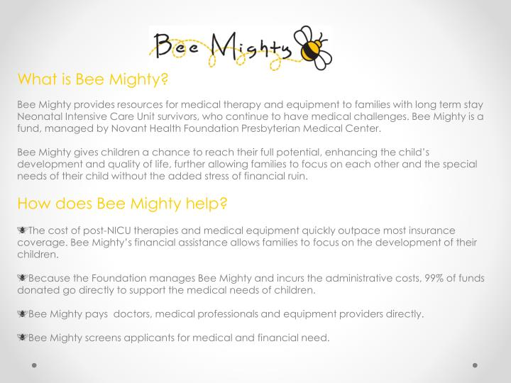 What is Bee Mighty?