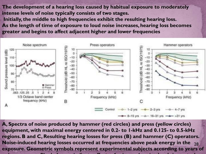 The development of a hearing loss caused by habitual exposure to moderately intense levels of noise typically consists of two stages.