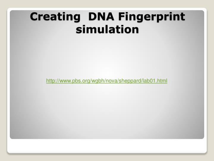 http://www.pbs.org/wgbh/nova/sheppard/lab01.html