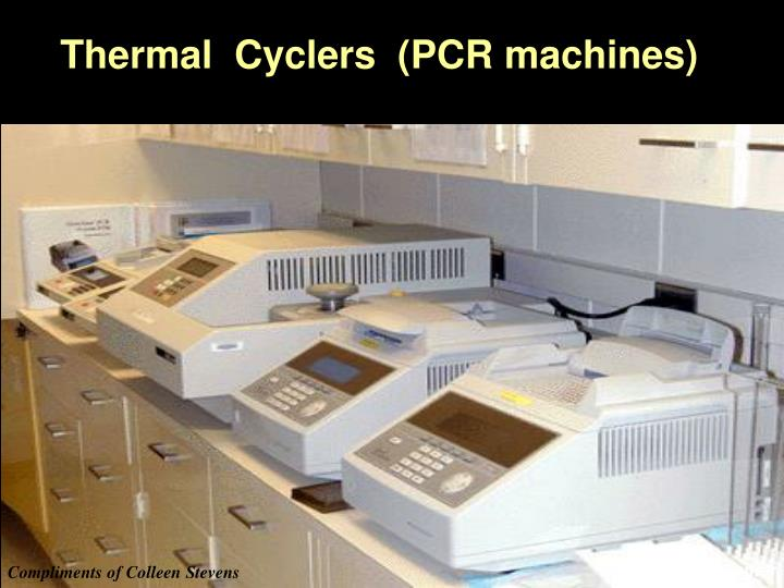 Thermal  Cyclers  (PCR machines)