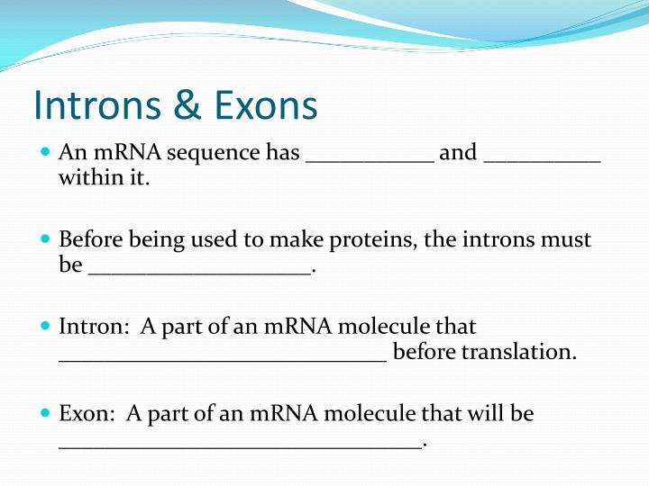 Introns