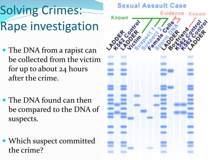 Solving Crimes:  Rape investigation