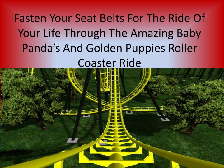 Fasten Your Seat Belts For The Ride Of Your Life Through The Amazing Baby Panda's And Golden Puppi...