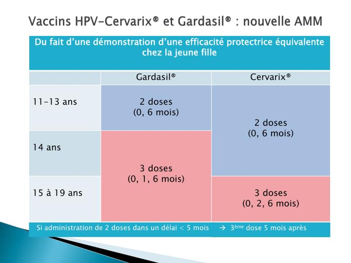 Vaccins HPV-