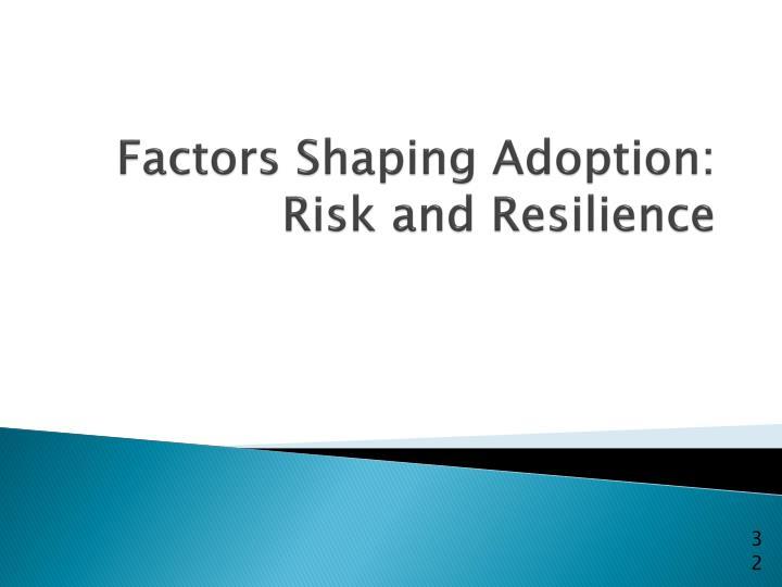 Factors Shaping Adoption: