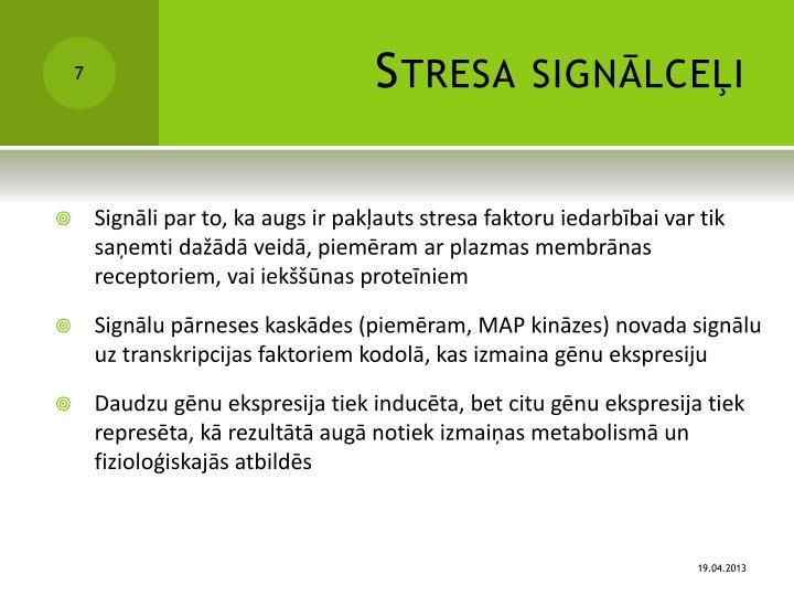 Stresa