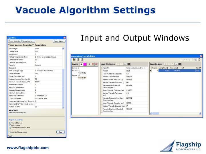Vacuole Algorithm Settings