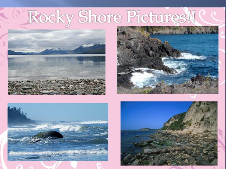Rocky Shore Pictures!!