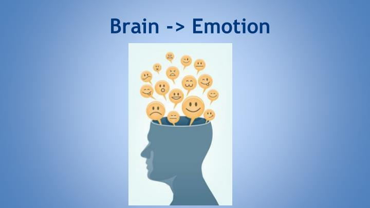 Brain -> Emotion