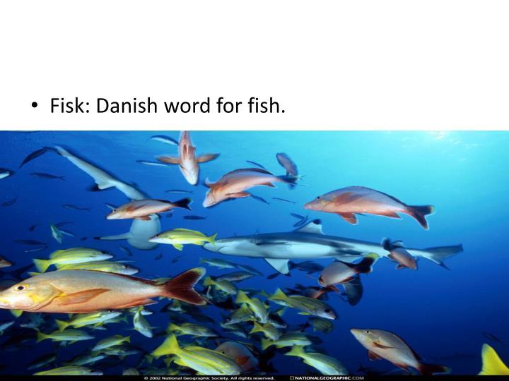 Fisk: Danish word for fish.