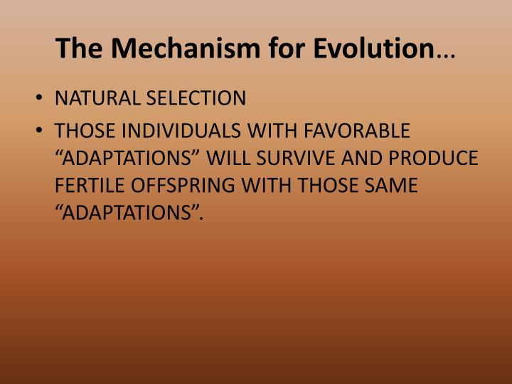 The Mechanism for Evolution