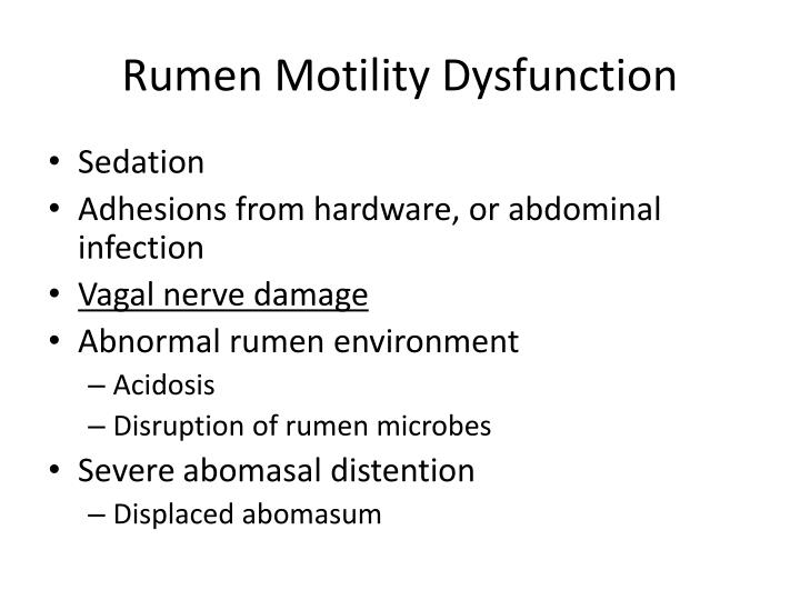 Rumen Motility Dysfunction