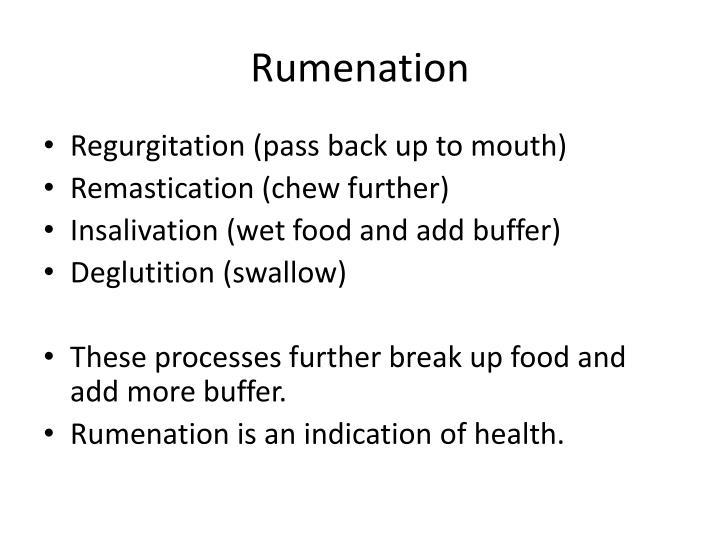Rumenation