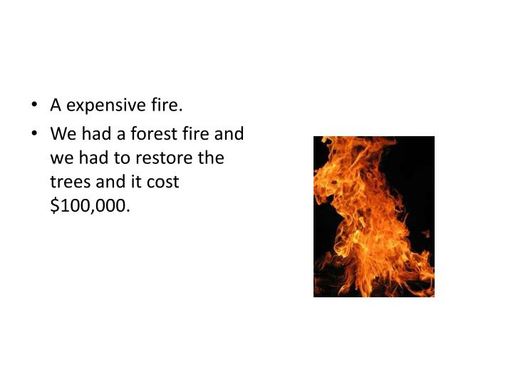 A expensive fire.