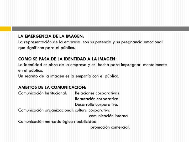 LA EMERGENCIA DE LA IMAGEN: