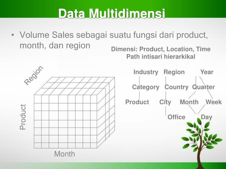 Data Multidimensi
